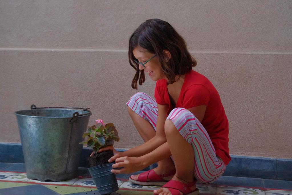 Senha verde. Uma produção do Goethe-Institut e diversos canais latinoamericanos. Os produtores estão entre os docentes do curso comKids.